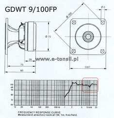 GDWT9 100 FP.jpg